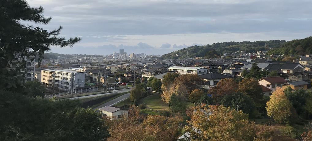 Japanese Life and Culture: Kaga Yuzen